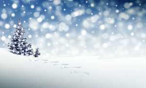 Kışın Yapılabilecek İşler