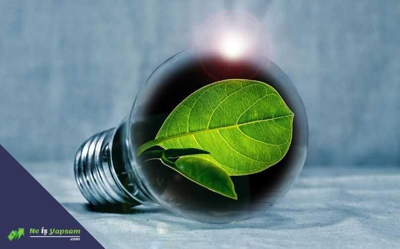 Yenilebilir Enerji Kaynakları