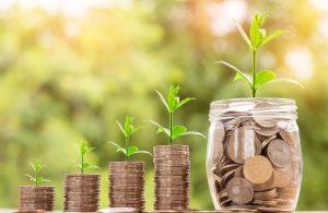 Para Kazanma Yolları En Kazançlı İş Fikirleri