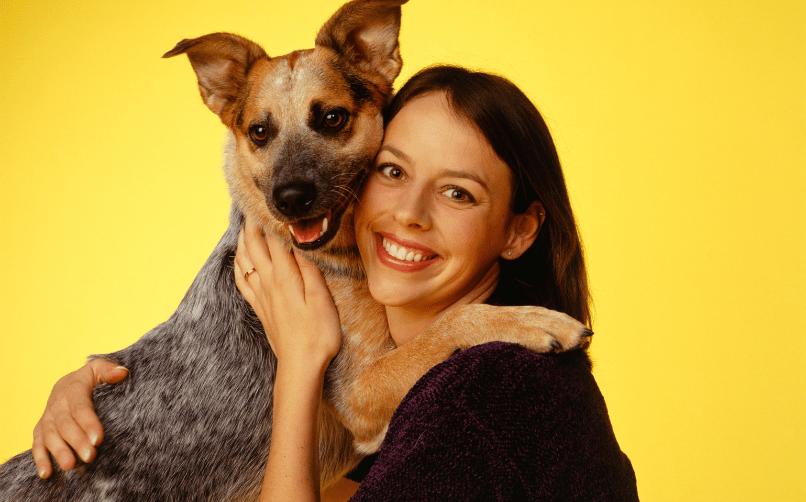 köpek bakıcılığı nedir